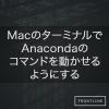 MacのターミナルでAnacondaのコマンドを動かせるようにする (conda, pythonなど)
